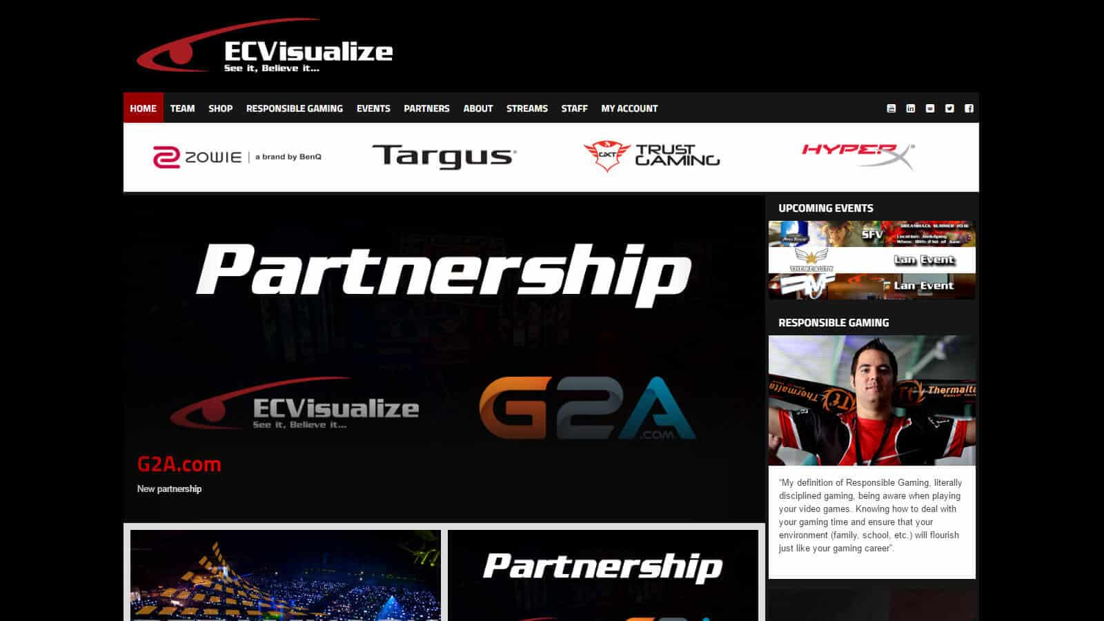 Website Ecvisualize  - ecvisualize - Websites